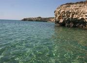 Spiaggia Pineta del Gelsomineto - Fontane Bianche