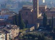 Basilica di Santa Maria dei Servi - Siena