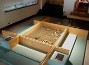 Nuovo Museo Provinciale Sannitico - Campobasso
