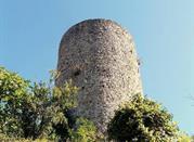 Torre di Viano - Viano