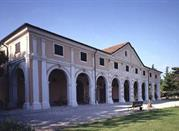 Museo di Storia Naturale e Archeologia - Montebelluna