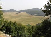 Valle dell'ombra  - Carpineto della Nora