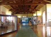 Museo Archeologico del Territorio di Populonia - Populonia