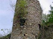 Castello Marchesi di Ceva ruderi - Perlo