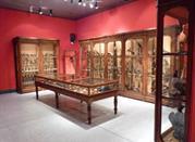 Museo Civico di Storia Naturale - Cremona