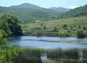 Riserva Regionale del Pantano di Pignola - Potenza