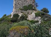 Castello Gioiosa Guardia  - Villamassargia