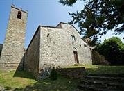 Pieve di San Vincenti - Gaiole in Chianti