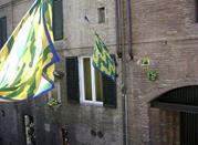 Nobil Contrada del Bruco - Siena