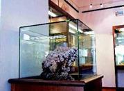 Museo dei Minerali Elbani - Rio Marina