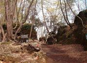 Parco Naturale Regionale di Portofino - Portofino
