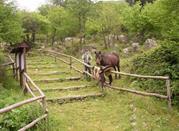 Oasi Parco Naturale Diecimare - Acquarola