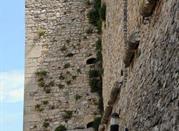 Castello di Tufara - Tufara