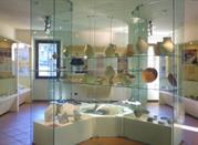 Museo della Regina - Cattolica