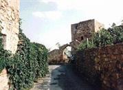 Torre del Guascone - Grosseto