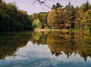 Parco naturale regionale dei Boschi di Carrega - Collecchio