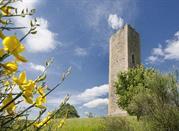 Torre di Bascio - Pennabilli