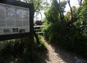 Il Sentiero Rilke - Duino Aurisina