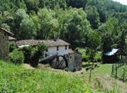 Oasi Prato Stagno di Sassoguidano - Pavullo Nel Frignano