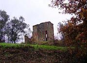 Torre Longobarda Diroccato - Montevarchi