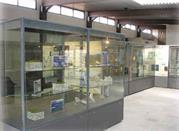 Museo Archeologico Comunale - Frosinone