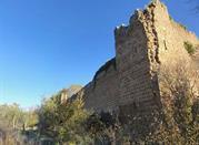 Castello di Vico - Viterbo