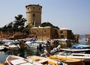 Torre del Saraceno - Giglio Isola