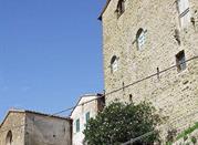 Castello di Montorgiali - Scansano