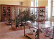 Civico museo archeologico - Lecco