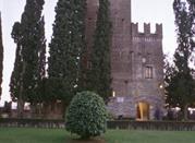 Museo Civico di Conegliano - Conegliano