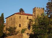 Castello Malaspina di Filattiera - Filattiera