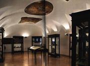Museo Archeologico dell'Agro Nocerino - Nocera Inferiore