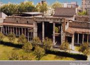 Villa di Oplontis e Villa Lucius Crassus Tertius - Torre Annunziata