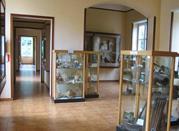 Museo di Paleobotanica ed Etnobotanica dell'Orto Botanico - Napoli