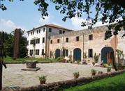 Museo Toni Benetton - Treviso