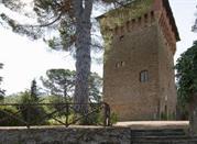 Castelluccio - Pienza