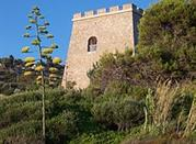 Torre Saracena di Caprioli - Palinuro