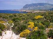 Riserva Naturale Orientata di Capo Rama - Terrasini