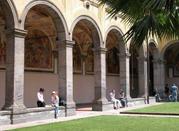 Museo di Anatomia Veterinaria - Napoli