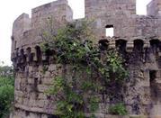 Castello Aragonese - Brindisi