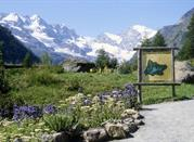 Giardino botanico alpino Paradisia - Cogne