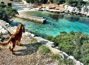 Spiaggia Cala Dragunara - Alghero