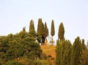 Piramide di Montaperti - Castelnuovo Berardenga