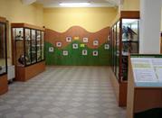 Museo Ornitologico - Poppi