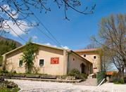 Museo dell'Orso - Villavallelonga