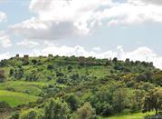 Case le Centocelle - Cencelle villag (IX sec) abbandonato - Tarquinia