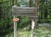 Sentiero la Deceuville - Bardonecchia