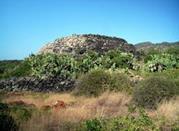 Sese Grande o Sese del Re - Pantelleria