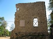 Castello di Montetortore  - Zocca