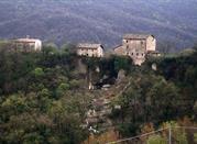 Castello di Borzano ruderi - Albinea